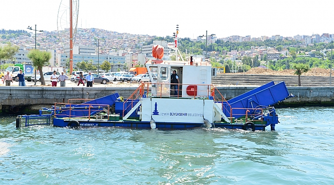 İzmir Körfezi'nde sevindiren rakamlar